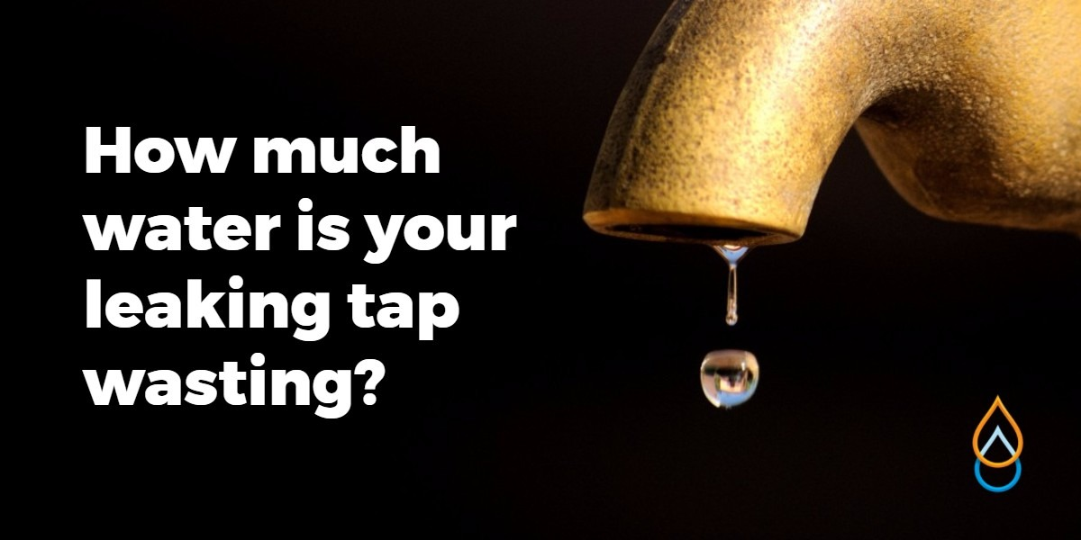 How much water are you wasting from your leaking tap?