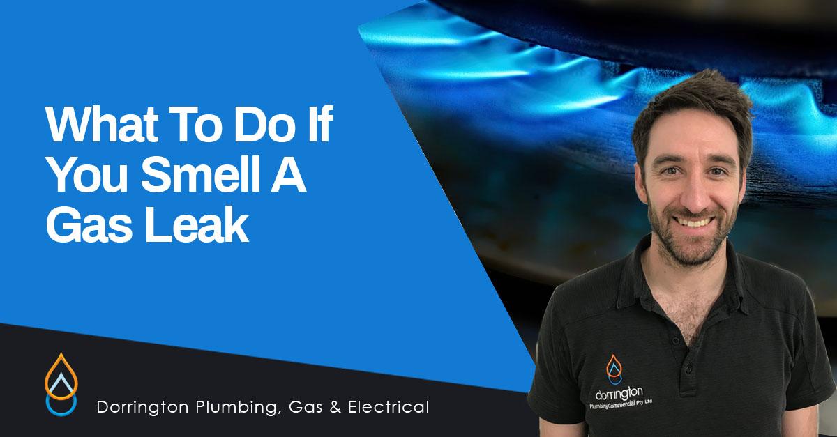 Gas Leak Action Plan